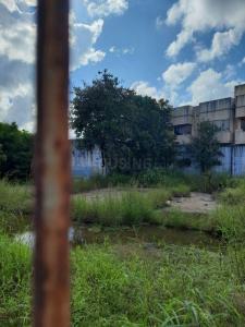 6600 Sq.ft Residential Plot for Sale in Adambakkam, Chennai