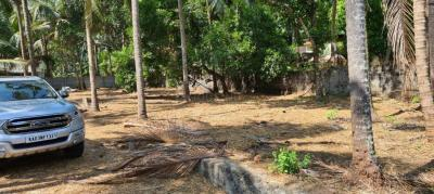 Gallery Cover Image of 1600 Sq.ft 3 BHK Villa for buy in Chakkamukku for 5500000