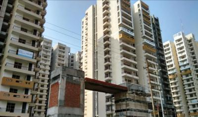 Gallery Cover Image of 930 Sq.ft 2 BHK Apartment for rent in Omkar Royal Nest, Noida Extension for 7500