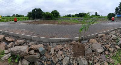 1000 Sq.ft Residential Plot for Sale in Punawale, Pune