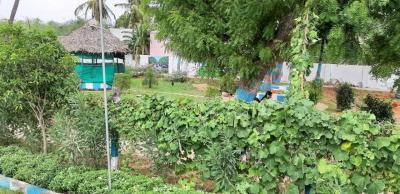 Gallery Cover Image of  Sq.ft Residential Plot for buy in Kodambakkam for 1857600