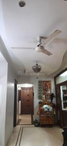 Gallery Cover Image of 2970 Sq.ft 4 BHK Independent Floor for buy in Greater Kailash for 47600000