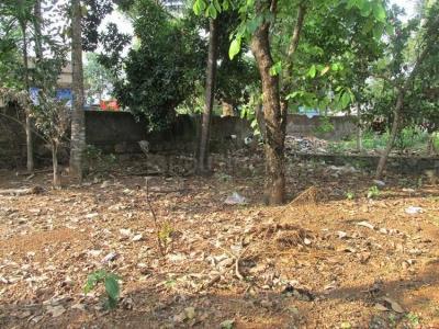 2178 Sq.ft Residential Plot for Sale in Periyar Nagar, Aluva