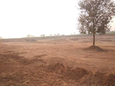 1000 Sq.ft Residential Plot for Sale in Ambabai, Jhansi