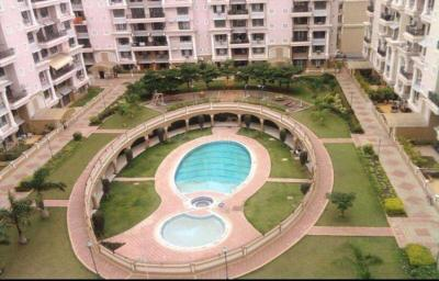 Gallery Cover Image of 1100 Sq.ft 3 BHK Apartment for rent in Kondhwa for 45000