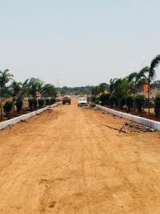 Gallery Cover Image of  Sq.ft Residential Plot for buy in Shadnagar for 1140000