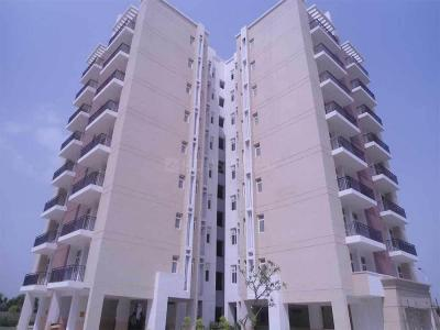Gallery Cover Image of 850 Sq.ft 2 BHK Apartment for buy in Omaxe New Heights, Sector 78 for 3700000