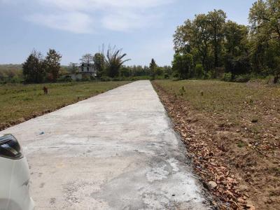 266 Sq.ft Residential Plot for Sale in Manduwala, Dehradun