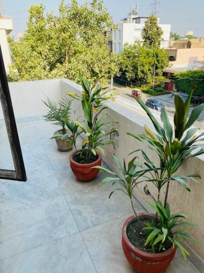 Balcony Image of Bala Ji Homs in Sector 16