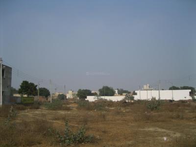 1746 Sq.ft Residential Plot for Sale in Patla, Sonepat