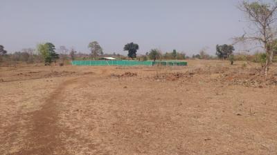 44520 Sq.ft Residential Plot for Sale in Dahanu, Palghar
