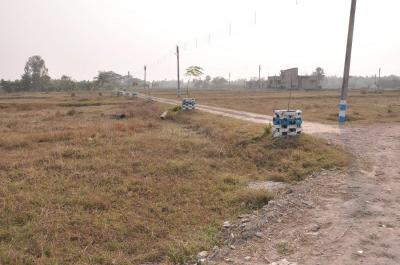 Gallery Cover Image of  Sq.ft Residential Plot for buy in Nepalgange for 950000