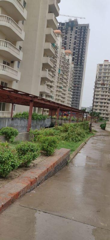 Building Image of 1050 Sq.ft 2 BHK Apartment for rent in Sector 70 for 7000