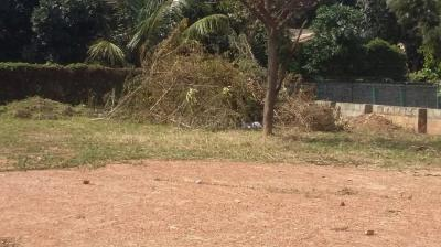 11758 Sq.ft Residential Plot for Sale in Marathahalli, Bangalore