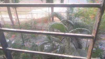 Balcony Image of PG 6646820 Andheri West in Andheri West