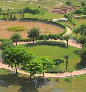 239 Sq.ft Residential Plot for Sale in Wave City, Ghaziabad