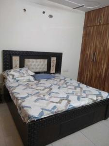 Gallery Cover Image of 1500 Sq.ft 2 BHK Apartment for rent in DDA Sanskriti Apartments, Sector 19 Dwarka for 33000