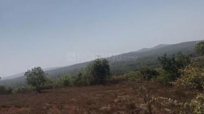 65636 Sq.ft Residential Plot for Sale in Harnai, Ratnagiri