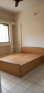 Gallery Cover Image of 1500 Sq.ft 3 BHK Apartment for rent in Amit Ved Vihar, Kothrud for 29000
