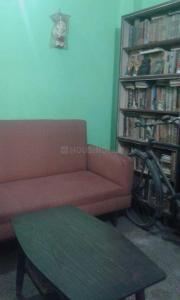 Bedroom Image of PG 4272363 Alipore in Alipore