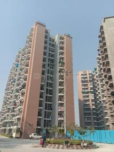 Gallery Cover Image of 1505 Sq.ft 3 BHK Apartment for rent in Saviour Park, Rajendra Nagar for 16000
