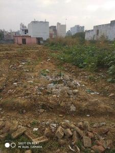Gallery Cover Image of  Sq.ft Residential Plot for buy in Najafgarh for 2000000