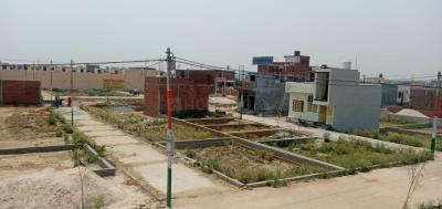 1000 Sq.ft Residential Plot for Sale in Chhapraula, Ghaziabad
