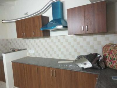 Gallery Cover Image of 1200 Sq.ft 2 BHK Apartment for rent in Thoraipakkam for 15000