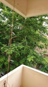 Gallery Cover Image of 914 Sq.ft 2 BHK Apartment for rent in Malleswaram for 28000