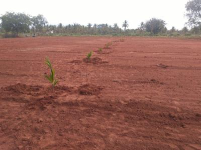 3000 Sq.ft Residential Plot for Sale in TUDA Layout, Tumkur