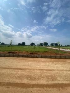 1485 Sq.ft Residential Plot for Sale in Thimmapur, Hyderabad