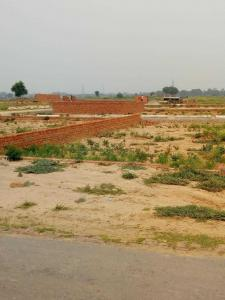 50 Sq.ft Residential Plot for Sale in Sector 115, Noida