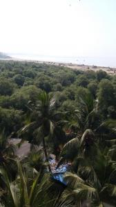 Gallery Cover Image of 1300 Sq.ft 3 BHK Apartment for buy in Cosmic Sea Shell Apartment, Andheri West for 41500000