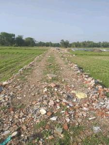 Gallery Cover Image of  Sq.ft Residential Plot for buy in Thakurpukur for 250000