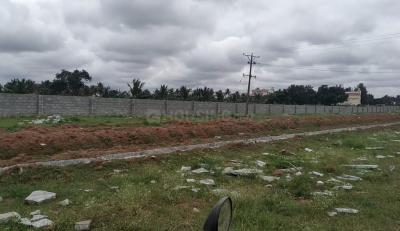 1905 Sq.ft Residential Plot for Sale in Lalbagh, Patna