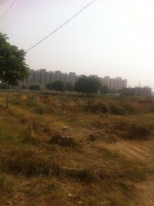 Gallery Cover Image of  Sq.ft Residential Plot for buy in Sector 85 for 10500000