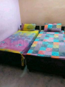Living Room Image of PG 7365609 Ramesh Nagar in Ramesh Nagar