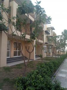 Gallery Cover Image of 1125 Sq.ft 3 BHK Independent Floor for rent in Sector 77 for 9000