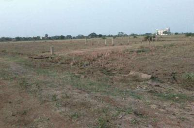 Gallery Cover Image of  Sq.ft Residential Plot for buy in Hitech City for 23850000