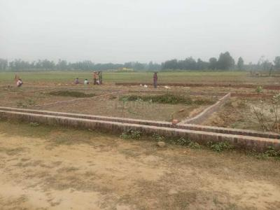 1500 Sq.ft Residential Plot for Sale in South City, Lucknow