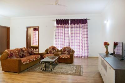 Living Room Image of PG 4642482 K R Puram in Krishnarajapura