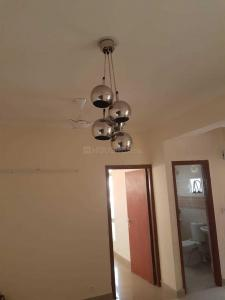 Gallery Cover Image of 1250 Sq.ft 2 BHK Apartment for rent in Sector 137 for 19000