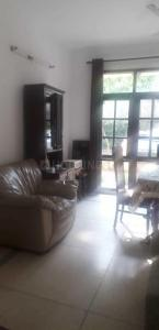 Living Room Image of Udaipur House in DLF Phase 4