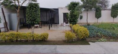 900 Sq.ft Residential Plot for Sale in Sector 47, Gurgaon