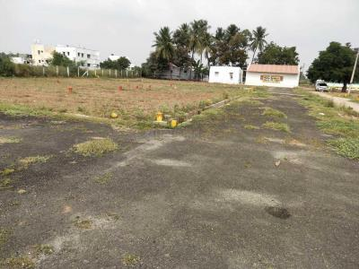 Gallery Cover Image of 1500 Sq.ft 3 BHK Villa for buy in Kalapatti for 3500000