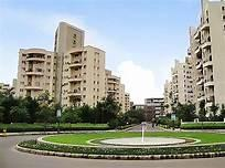 Gallery Cover Image of 600 Sq.ft 1 BHK Apartment for rent in Heliconia, Hadapsar for 12000