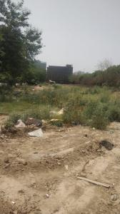 200 Sq.ft Residential Plot for Sale in Sector 122, Noida