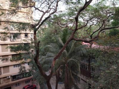 Gallery Cover Image of 1000 Sq.ft 1 BHK Apartment for rent in Bandra West for 72000