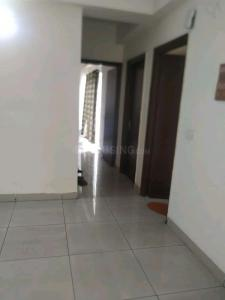 Hall Image of Single Occupancy Room In A 3 Bhk Flat in Noida Extension