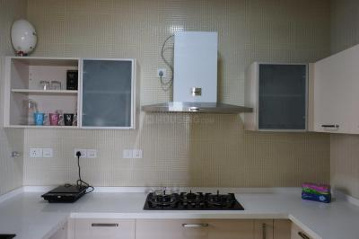Gallery Cover Image of 1444 Sq.ft 2 BHK Apartment for rent in Whitefield for 40000